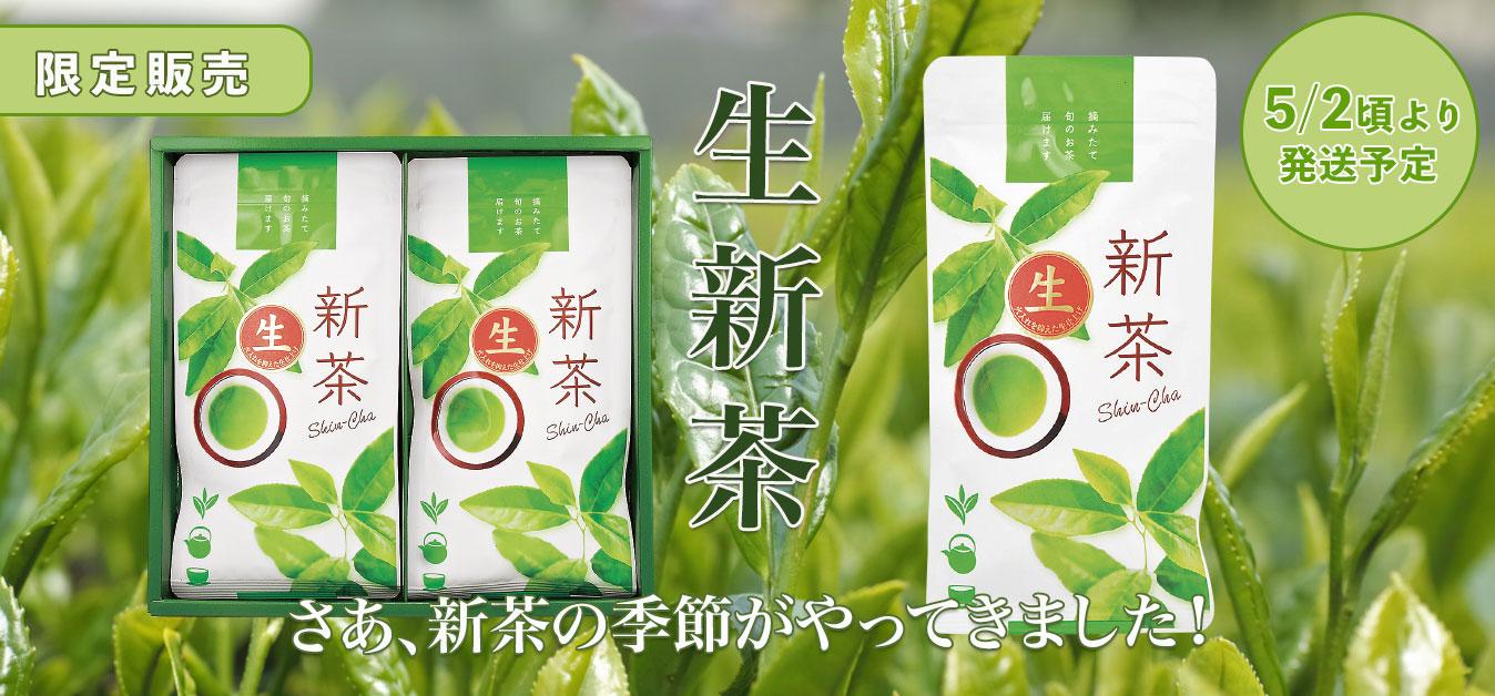2020年新茶 生新茶(静岡 牧之原)