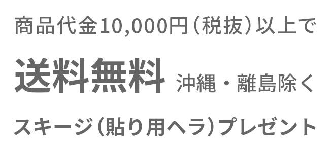 商品代金10,000円(税抜)以上で送料無料(沖縄・離島除く)andスキージ(貼り用ヘラ)プレゼント