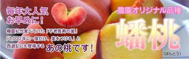農園オリジナル品種 蟠桃(ばんとう)
