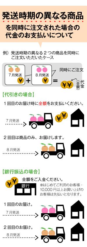 発送時期の異なる商品を同時に注文された場合の代金のお支払いについて