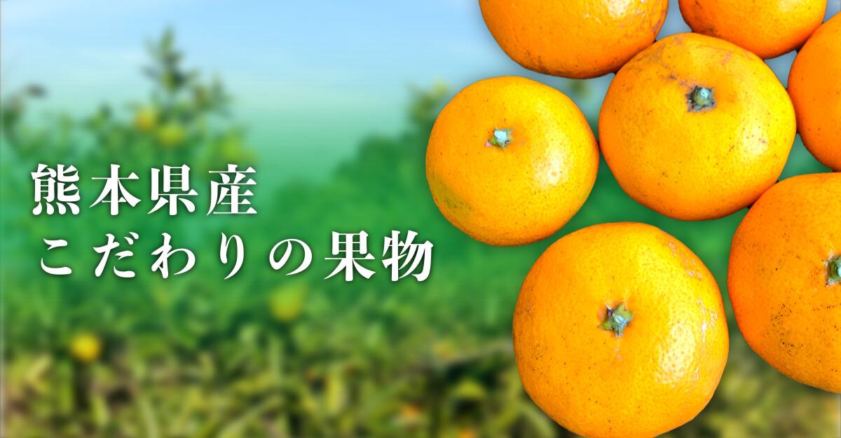 熊本県産こだわりの果物