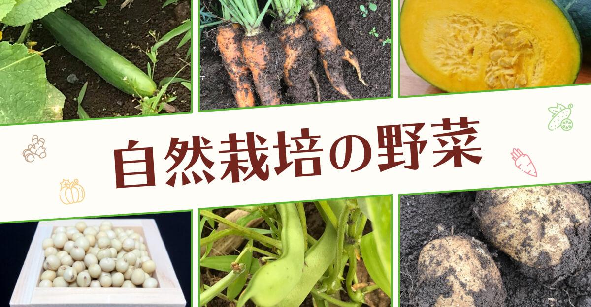 こだわりの自然栽培野菜・無農薬野菜
