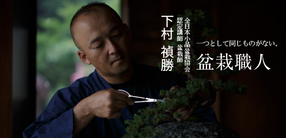 全日本小品盆栽協会 認定講師 盆栽師下村 禎勝 盆栽職人