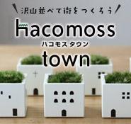 ハコモスタウン