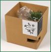ミニ盆栽『ちょこぼん』専用梱包箱