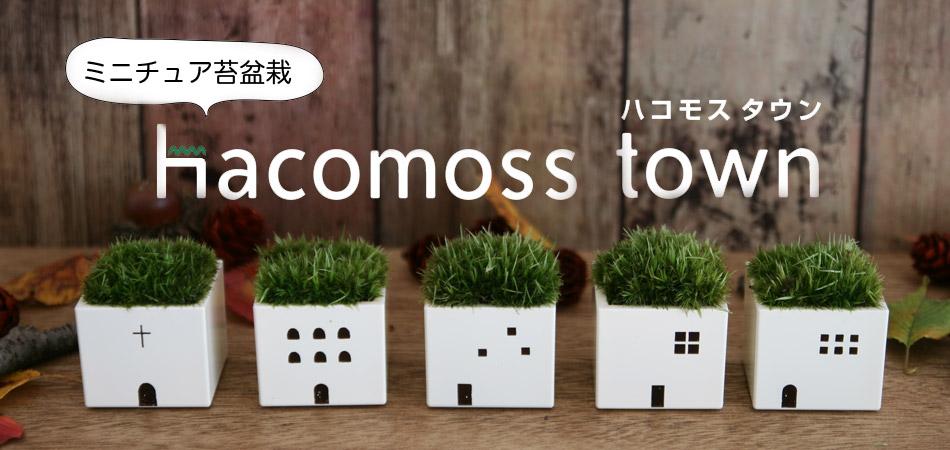 ミニチュア苔盆栽 hacomoss town,ハコモスタウン,ハコモス,苔,ミニチュア,コケ