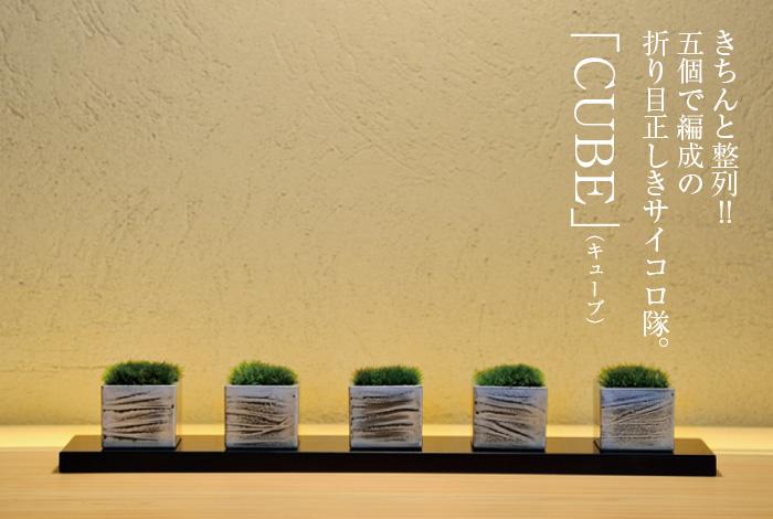 きちんと整列!!5個で編成の折り目正しきサイコロ隊。「CUBE」(キューブ)