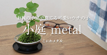 小庭metal