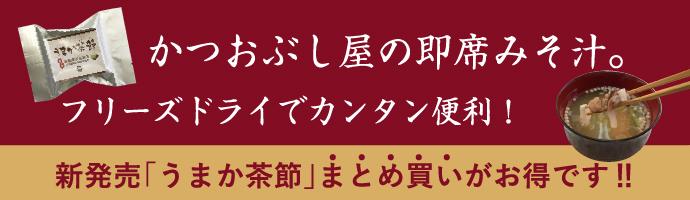 新発売「うまか茶節」特別価格にて販売中!