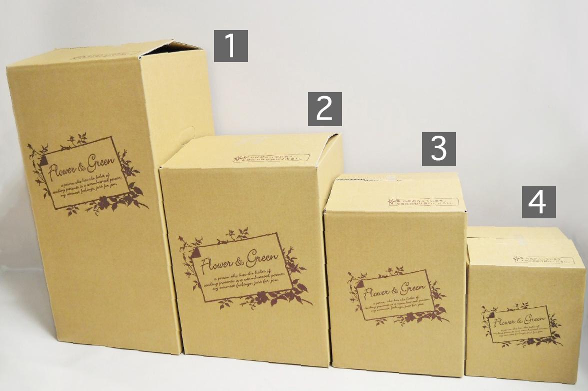 箱のサイズについて