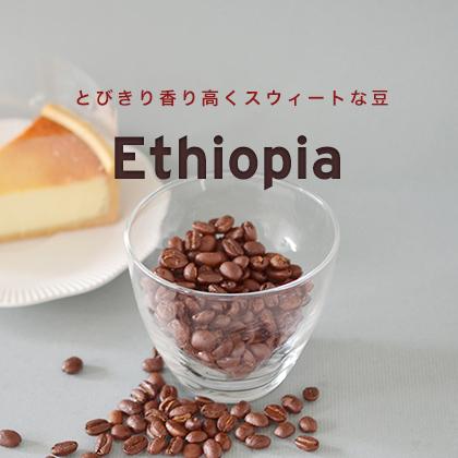8・9月おすすめ豆 エチオピア