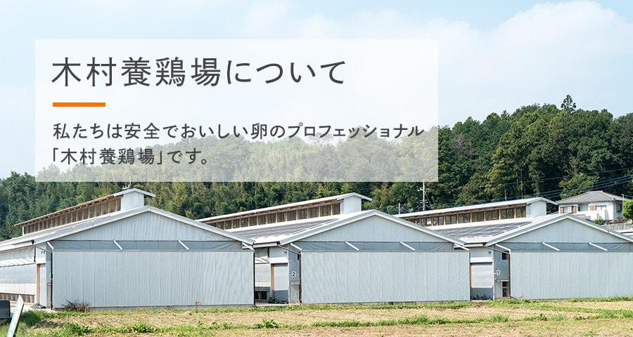 木村養鶏場について 私たちは安全でおいしい卵のプロフェッショナル「木村養鶏場」です。