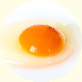 栄味卵について