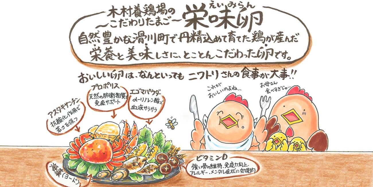 木村養鶏場のこだわり卵「栄味卵(えいみらん)」 自然豊かな滑川町で丹精込めて育てた鶏が産んだ栄養と美味しさに、とことんこだわった卵です。 おいしい卵は、なんといってもニワトリさんの食事が大事!!
