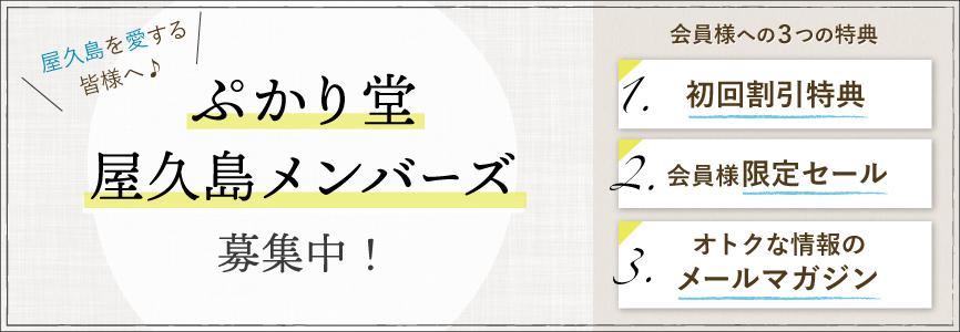 ぷかり堂屋久島メンバーズ募集中!