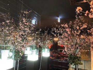 桜和風店内装飾
