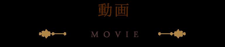 動画 MOVIE