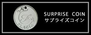 サプライズコイン