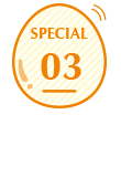 special03