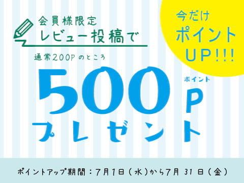 レビュー投稿で500Pプレゼント!