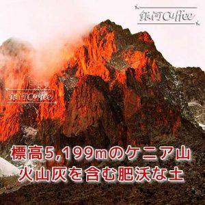 レッドマウンテン ケニア山のイメージ