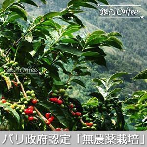 バリ政府認定の無農薬栽培法