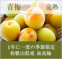 青梅完熟・1年に一度の季節限定・和歌山県産の南高梅