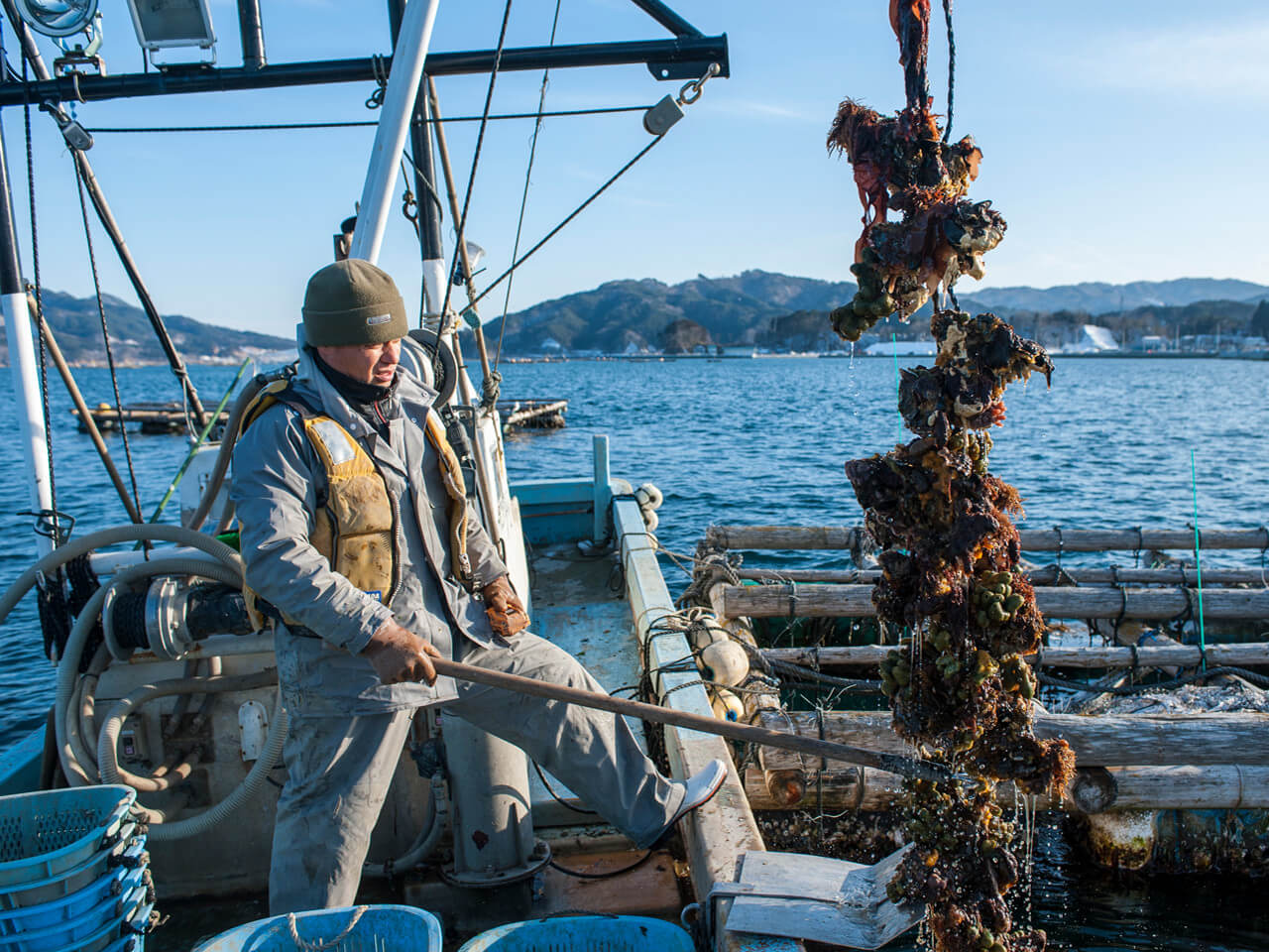 牡蠣の水揚げ 佐々木友彦