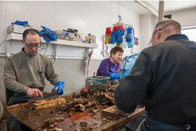井筒力男さんとご家族 牡蠣の下処理作業