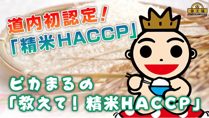 ピカまるの「教えて!精米HACCP」
