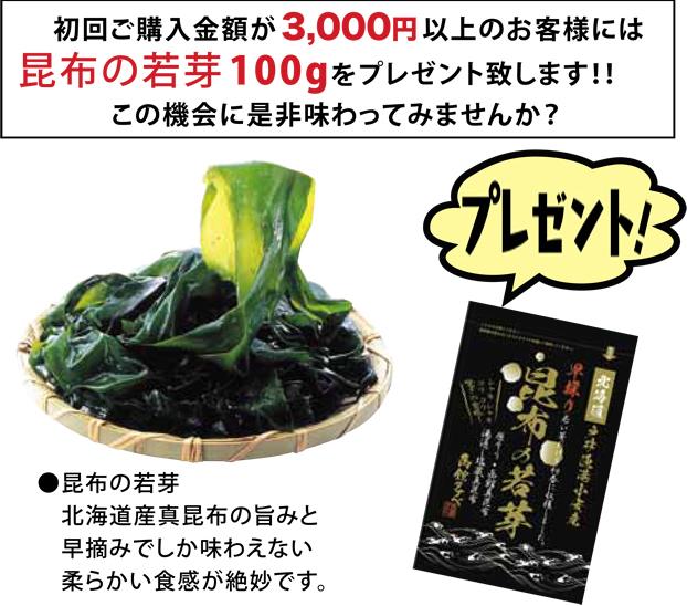 初回購入金額が3,000円以上のお客様には昆布の若芽100gをプレゼント致します!!この機会に是非味わってみませんか?