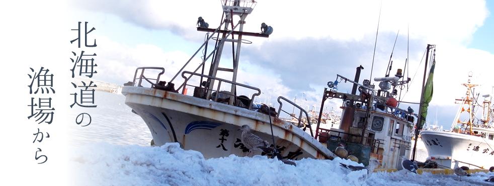 北海道の漁場から