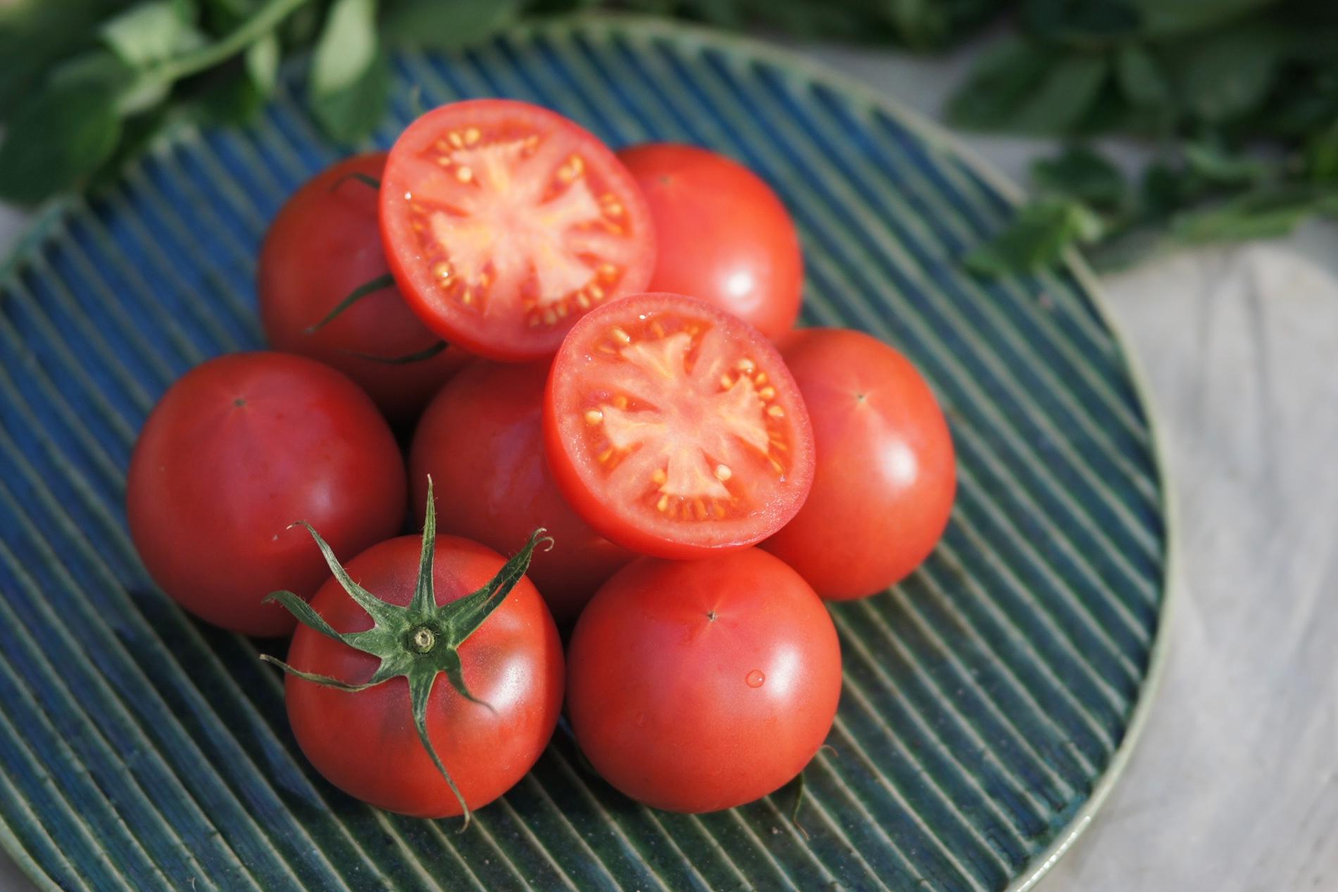 カットしたフルーツトマトの画像