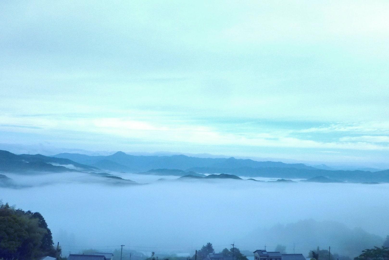 茶園のあるウスギ山から見下ろす雲海の画像