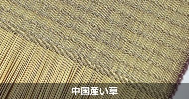 中国産い草