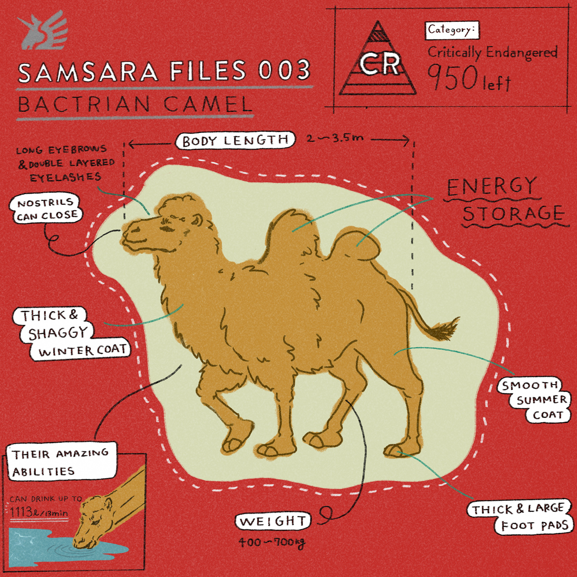 フェアトレードグッズで扱った絶滅危惧種の動物フタコブラクダ