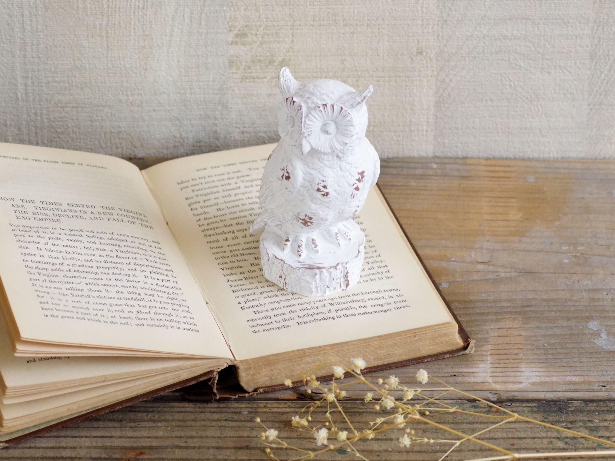 幸せを運んでくれる小さなフクロウ。ホワイトオウル2