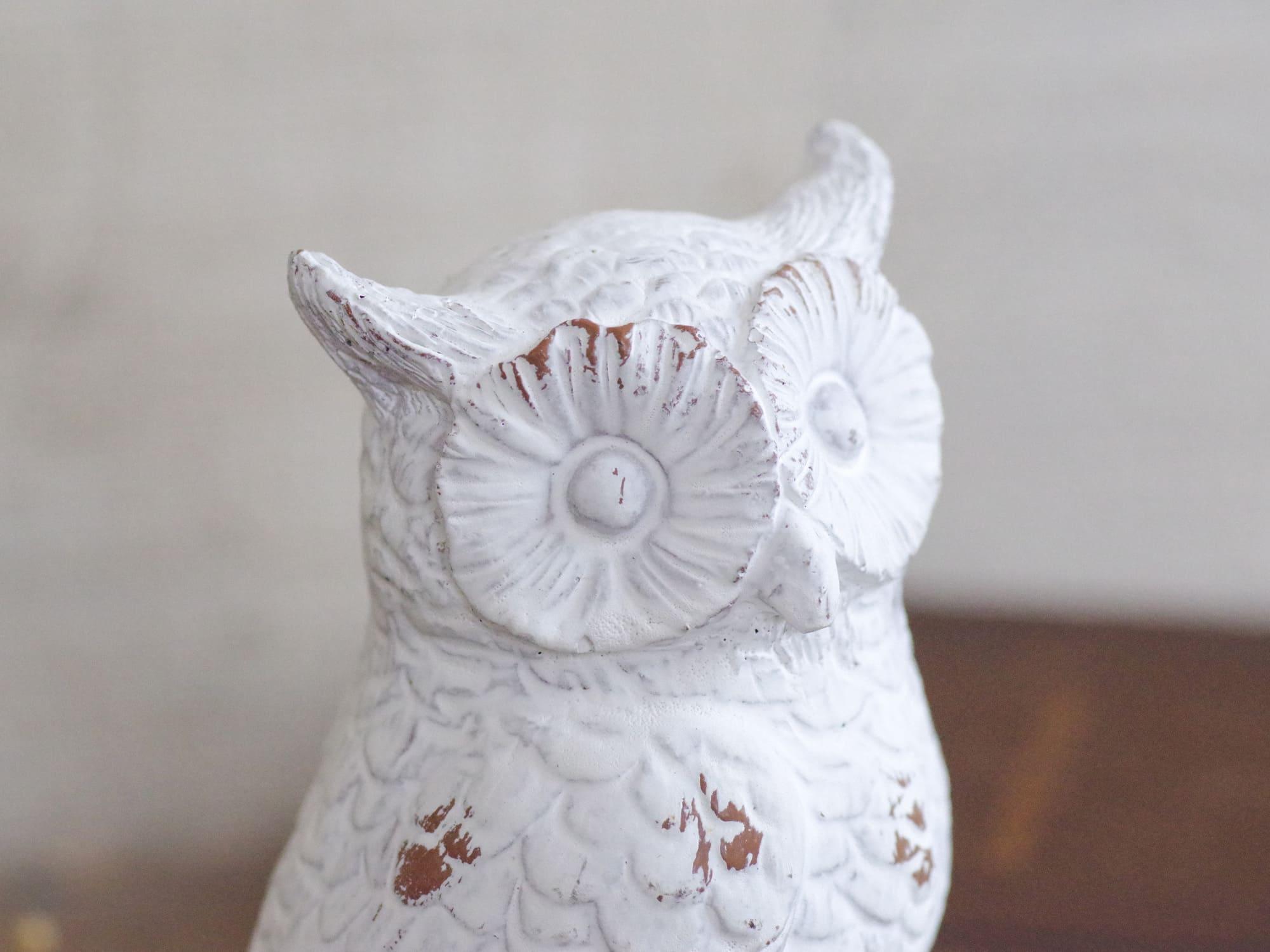 幸せを運んでくれる小さなフクロウ。ホワイトオウル1