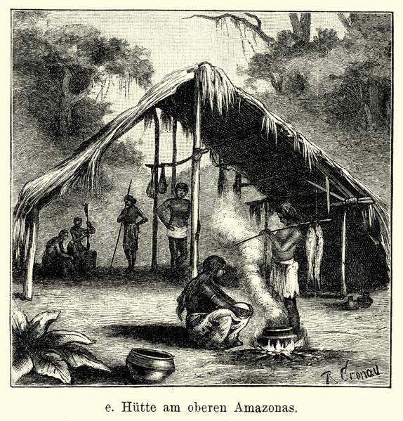 南米のインディオは古くからケブラペドラを健康維持のために有効利用していました
