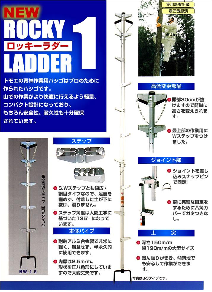 ロッキーラダー1