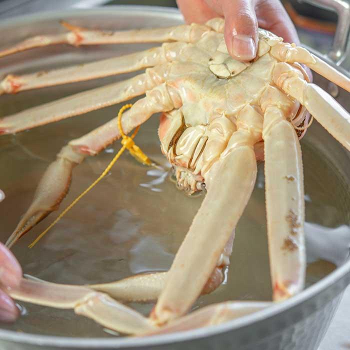 越前蟹を茹でる