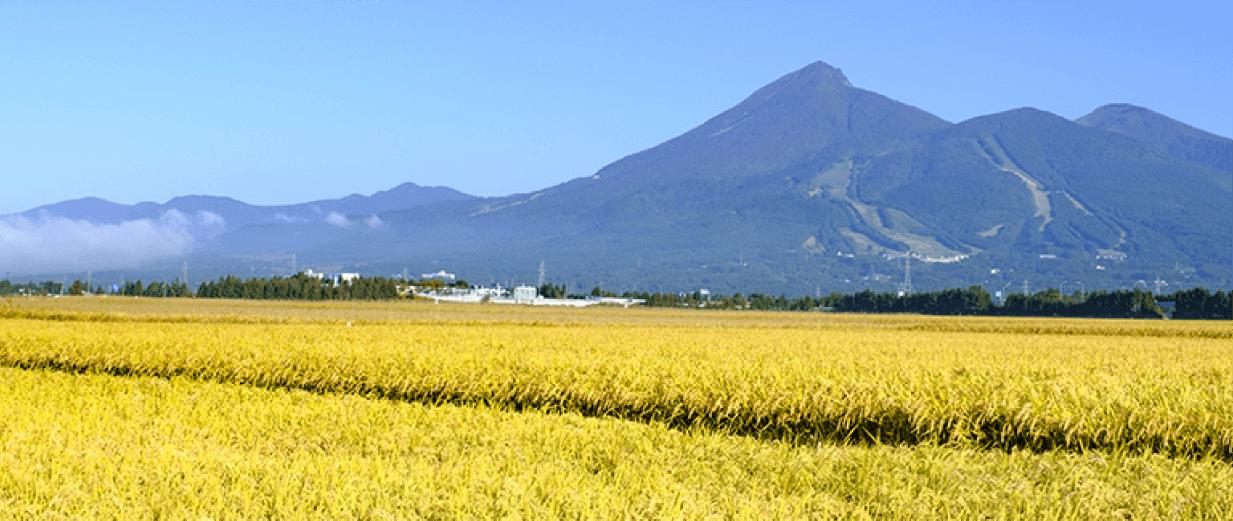 会津の気候風土が織りなす自然と豊かな土壌