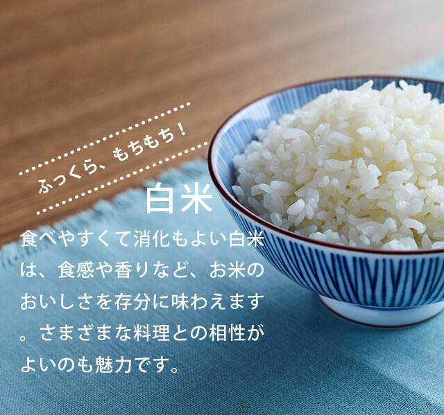 ふっくら、もちもち!「白米」食べやすくて消化もよい白米は、食感や香りなど、お米のおいしさを存分に味わえます。さまざまな料理との相性がよいのも魅力です。