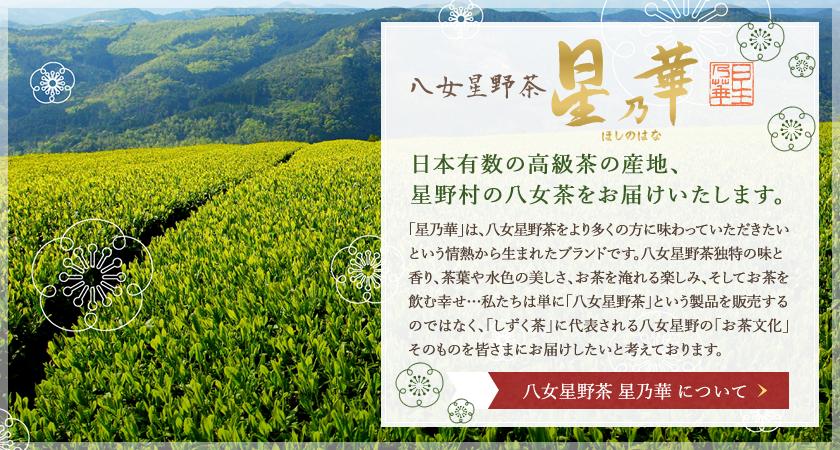 八女星野茶 星乃華 日本有数の高級茶の産地、星野村の八女茶をお届けいたします。