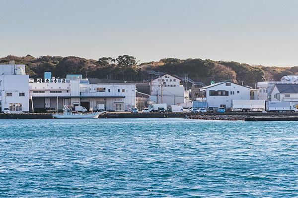 三崎恵水産社屋:三崎港対岸の城ヶ島