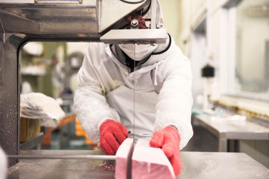 冷凍マグロを機械を使ってカットしていく様子