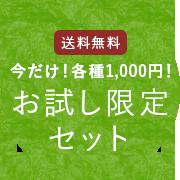 送料無料 今だけ!各種1000円! お試し限定セット
