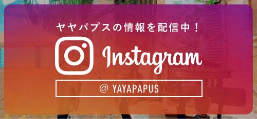 yayapapus instagram