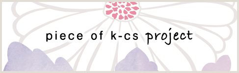 piace of k-cs project
