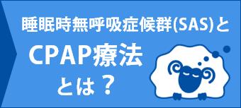 睡眠時無呼吸症候群(SAS)とCPAP療法